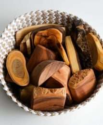 Predan Natural Wooden Building Blocks