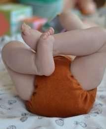 Puppi Merino Wool Cover (Mini One Size Autumn Palette - Snaps)