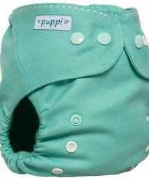 Puppi Merino Wool Cover (Mini One Size Baby Mint - Snaps)