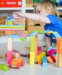 Tegu colourful magnetic wooden building blocks