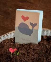 Die Stadtgärtner - greeting seed card - Alles Liebe - Wal