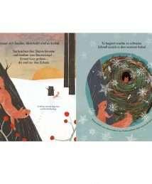 Magellan Sachbilderbuch Jahreszeiten-natur-Wald Martin Jenkins, Richard Jones - Komm, wir entdecken die Eichhörnchen