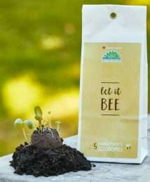 Seedbombs Set of 5 - Let it bee (1)