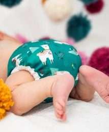 Doodush Newborn Pul Cover Snaps